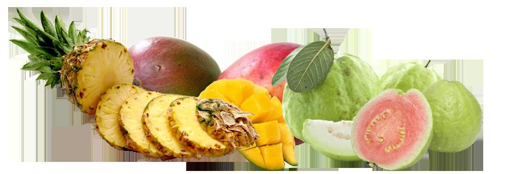 玉井之門水果乾 芒果乾